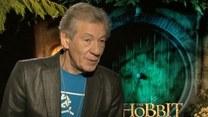 Ian McKellen: Niektórzy są gejami, pogódźcie się z tym