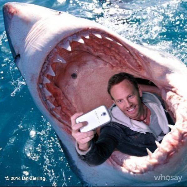 """Ian Ziering i jego słynne selfie na planie """"Rekinado 2"""" /internet"""