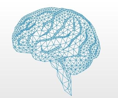 IBM tworzy komputer podobny do mózgu