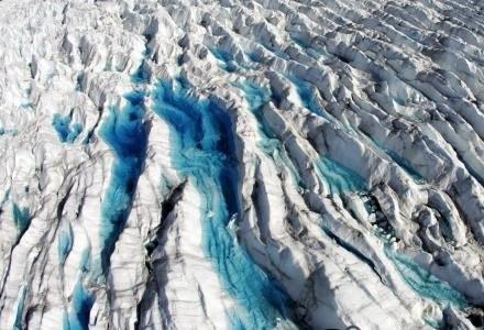 Icepack może przyprawić o dreszcze. /AFP