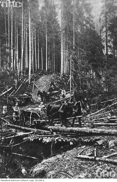 Niesłychanym na owe czasu wyczynem była budowa Drogi Legionów w Karpatach. Żołnierze II Brygady w pięć dni wytyczyli drogę o długości 7 km, na której postawili 28 mostów. Most na przełęczy Pantyrowej, październik 1914