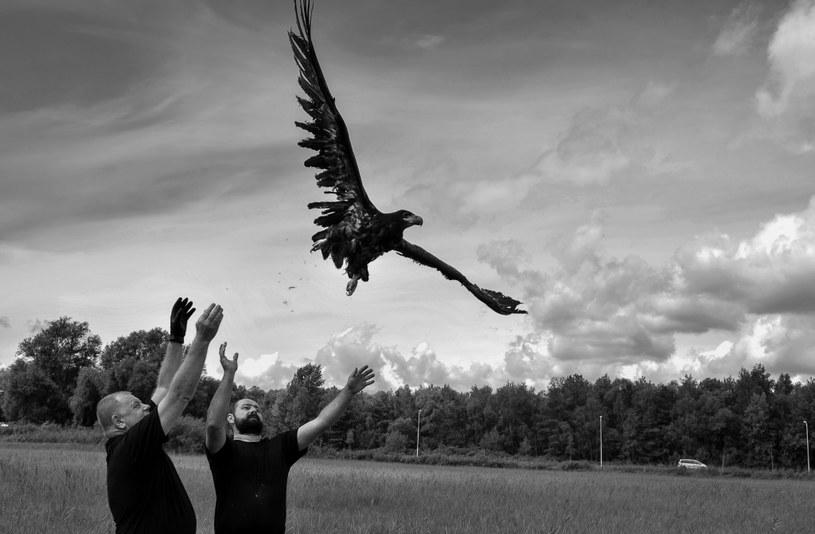 II miejsce/ Natura/ fragment fotoreportażu/Świnoujście (Polska), lipiec-sierpień 2016 rok /MARCIN BIELECKI, POLSKA AGENCJA PRASOWA /