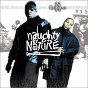 Naughty by Nature: -IIcons