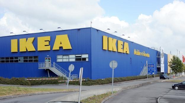 IKEA kupiła tereny inwestycyjne na granicy Opola i gminy Turawa /AFP