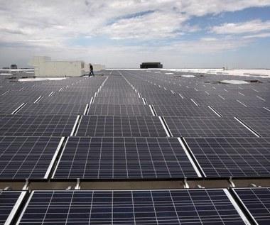 Ikea planuje energetyczną rewolucję za 2 mld dol.