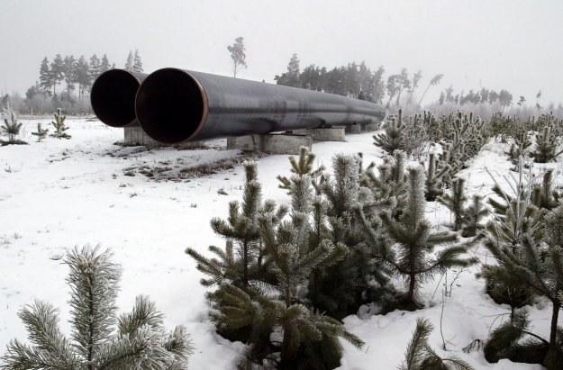Ile mamy gazu łupkowego w Polsce? /AFP