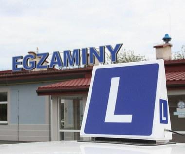 Ile obecnie kosztuje prawo jazdy kategorii B? Ceny w 2021 roku
