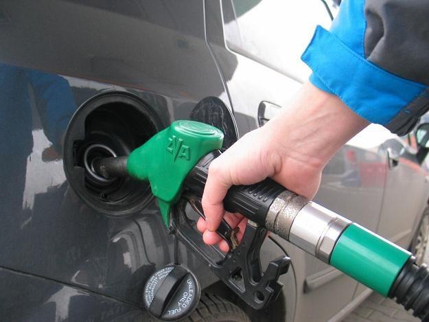 Ile VAT od paliwa będzie można odliczyć / Fot: Adrian Slazok /Reporter