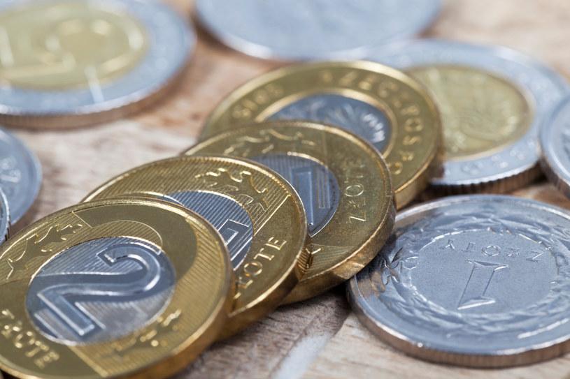 Ile zarabiają Polacy? Zdj. ilustracyjne /123RF/PICSEL