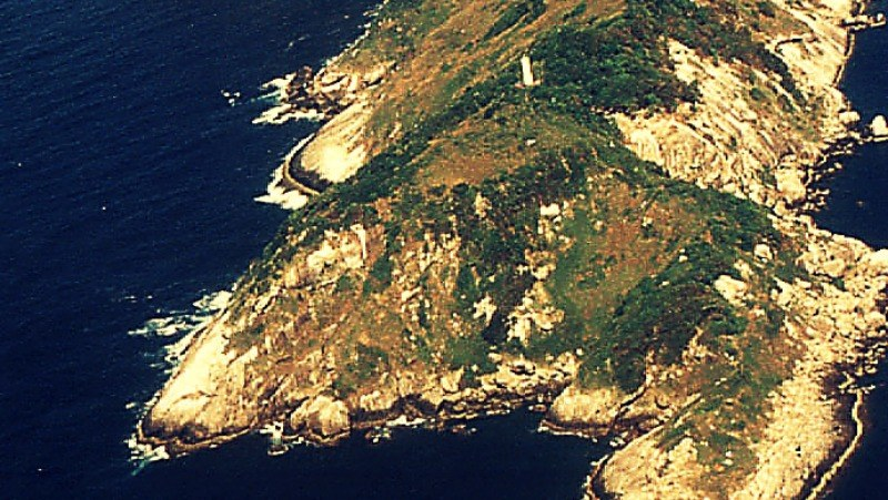 Ilha da Queimada Grande - jedno z najniebezpieczniejszych miejsc na Ziemi /materiały prasowe