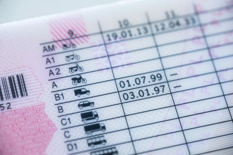Ilu jest kierowców w Polsce? Jest nas więcej czy mniej niz samochodów? /ARKADIUSZ ZIOLEK /Agencja SE/East News