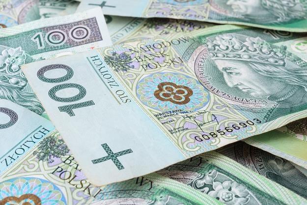 Im więcej krajowych źródeł finansowania, tym mniejsza potrzeba sprzedaży obligacji w walutach obcych /©123RF/PICSEL