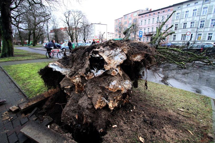 IMGW i Rządowe Centrum Bezpieczeństwa ostrzegają przed gwałtowną zmianą pogody /Marcin Bielecki /PAP