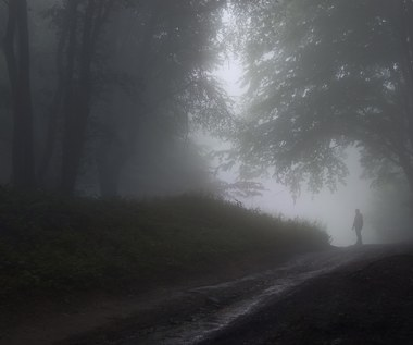 IMGW ostrzega przed gęstymi mgłami