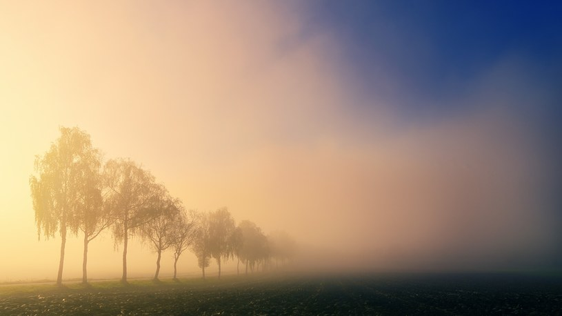 IMGW ostrzega przed gęstymi mgłami /jplenio /Pixabay.com