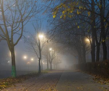 IMGW wydaje ostrzeżenie przed mgłami dla ośmiu województw