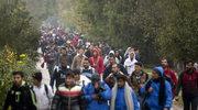 Imigranci dotrą pod granicę chorwacko-słoweńską