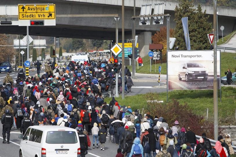 Imigranci na granicy austriacko-słoweńskiej /Gyorgy Varga /PAP/EPA