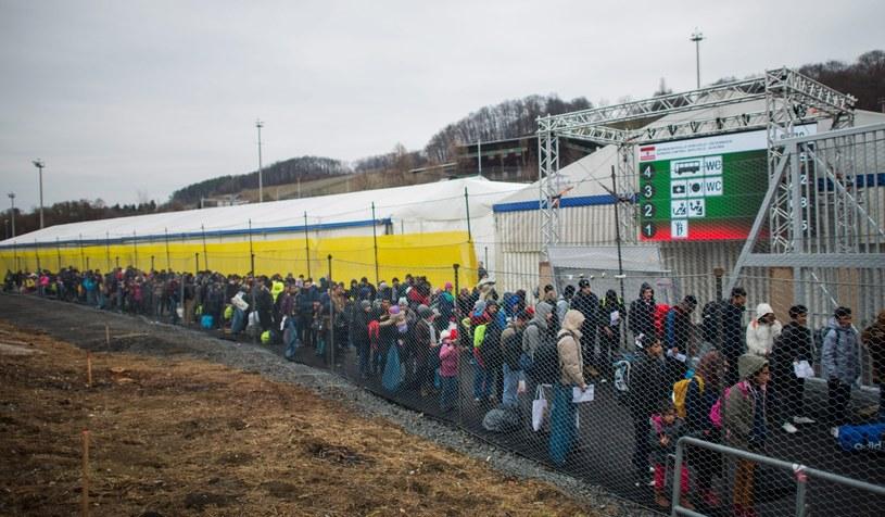 Imigranci na granicy między Słowenią i Austrią, zdj. ilustracyjne /CHRISTIAN BRUNA /PAP/EPA