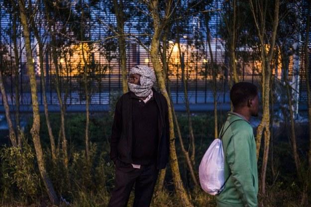 Imigranci w Calais /PAP/EPA/YOAN VALAT /PAP/EPA