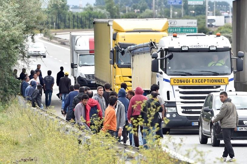Imigranci w pobliżu Calais /PHILIPPE HUGUEN /AFP