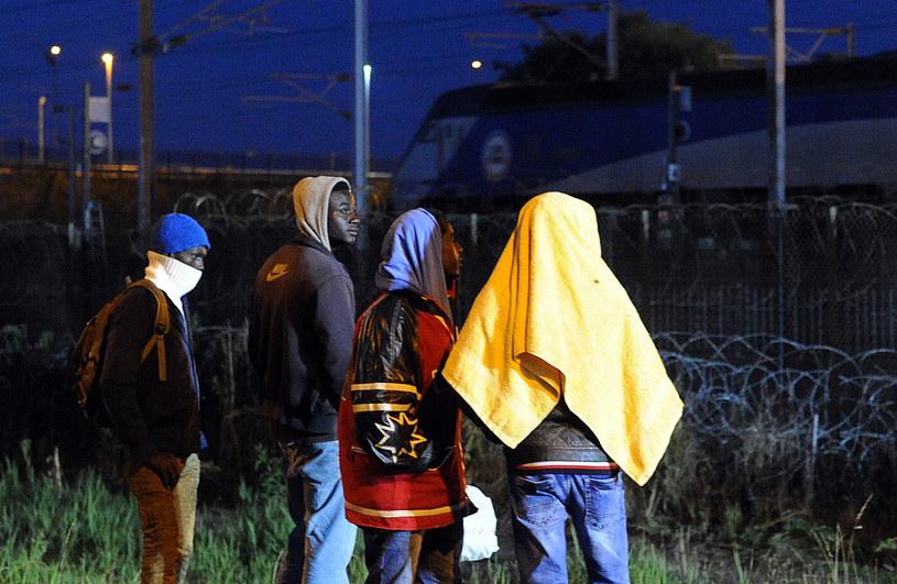 Imigranci w pobliżu eurotunelu /AFP