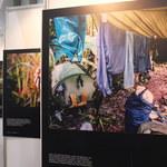 Imprezy i warsztaty targów FVF 2014