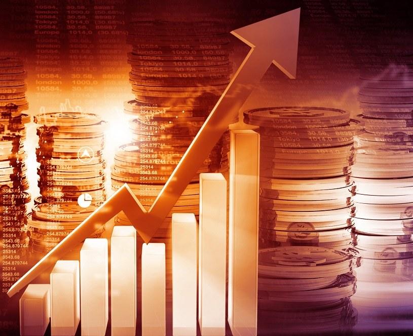 Indeks WIG 20 w ujęciu tygodniowym zwyżkował o ponad 4 procent /123RF/PICSEL