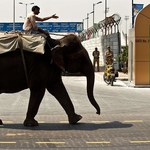 Indie: Sukces premiera Modiego w Davos