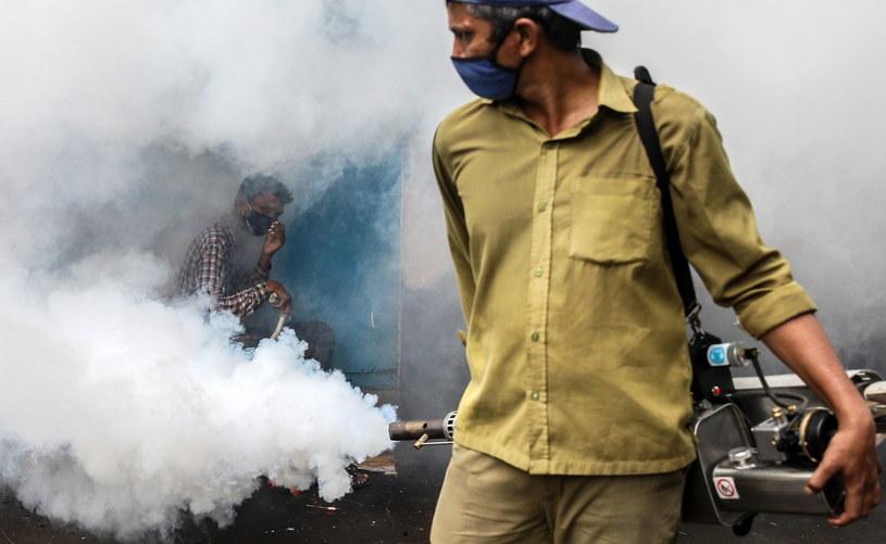 Indie walczą z malarią w czasie epidemii koronawirusa /DIVYAKANT SOLANKI /PAP/EPA