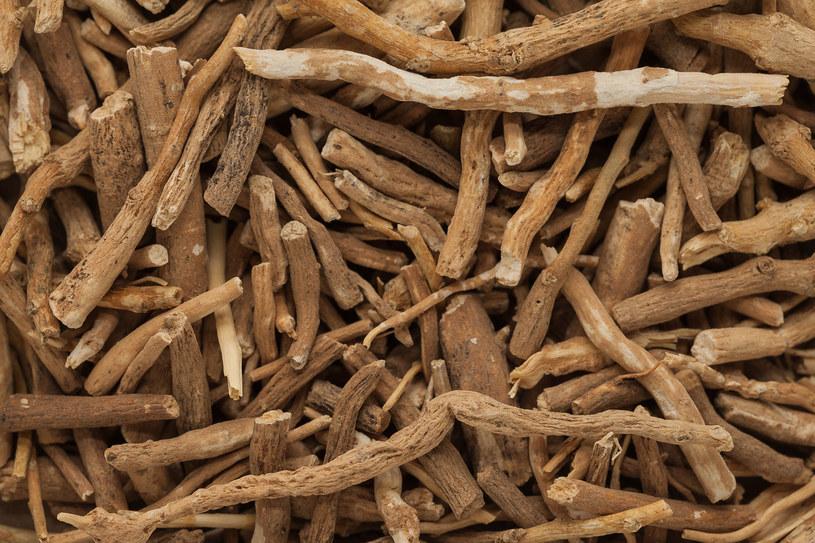 Indyjski żeń-szeń pozwala utrzymać hormony w ryzach /123RF/PICSEL