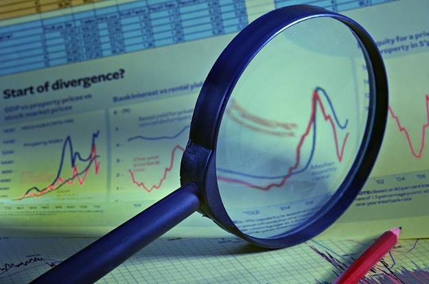 Informacje gospodarcze a analiza fundamentalna /©123RF/PICSEL