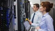 Informatycy niemal jak członkowie zarządów - satysfakcja zawodowa i przyczyny odejść pracowników IT
