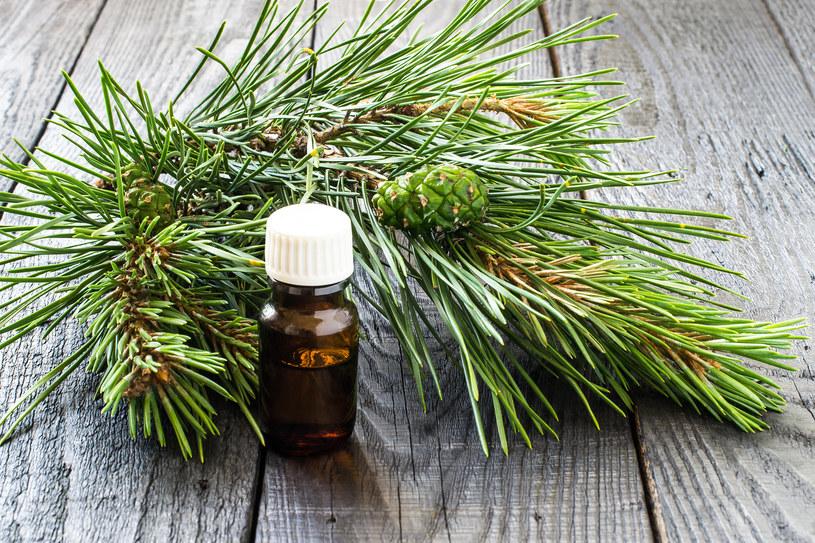 Inhalacja olejkiem sosnowym ułatwi oddychanie