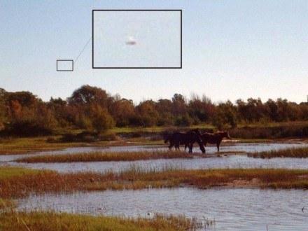 Inne zdjęcie z powiększeniami domniemanych UFO wykonana w argentyńskiej prowincji La Pampa /MWMedia