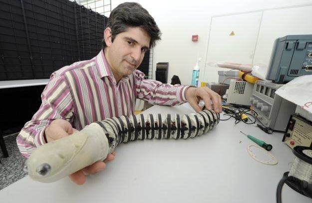 Inny robot wykonany na wzór prymitywnego minoga /AFP