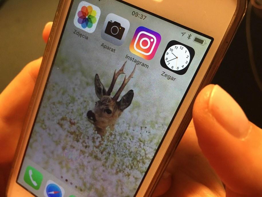 Instagram ma awarię /RMF FM