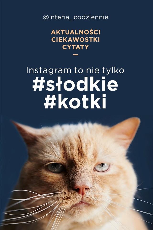 Instagram /interia /INTERIA.PL