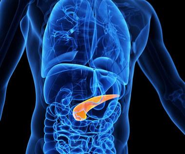 Insulinooporność: Przyczyny, objawy i leczenie dietą