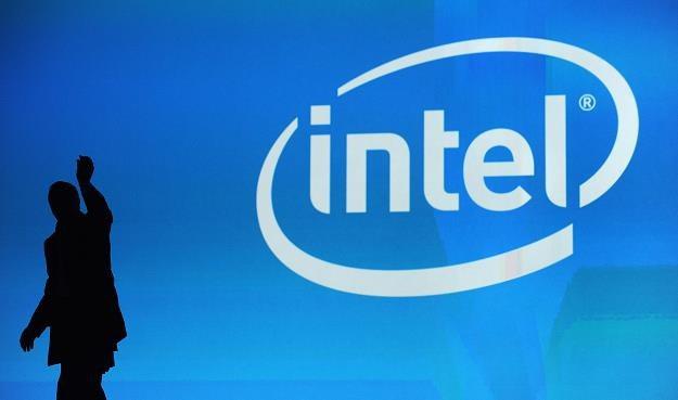 Intel kupi mniejszego rywala - firmę Altera - za 16,7 mld dol. /AFP