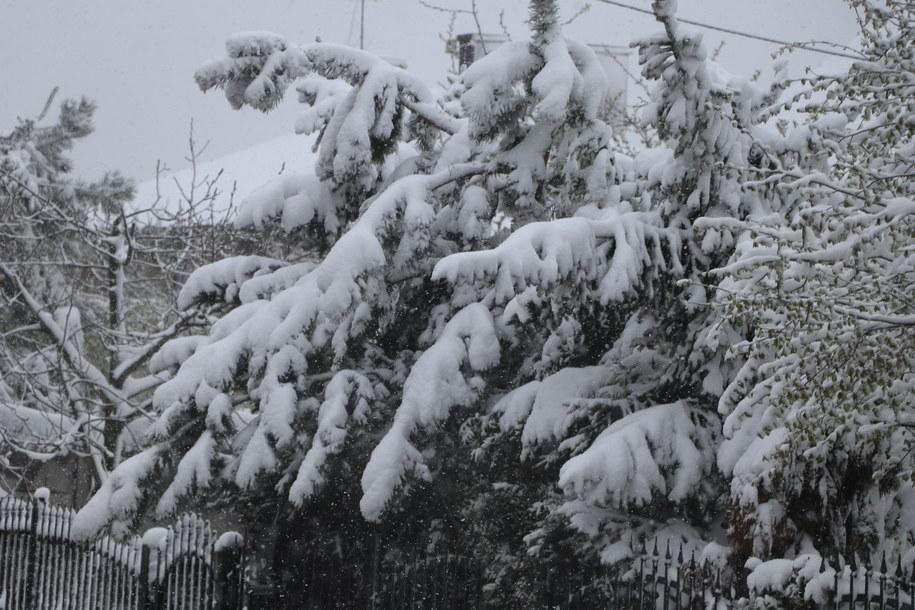 Intensywne opady śniegu na Śląsku /Jacek Skóra /RMF FM