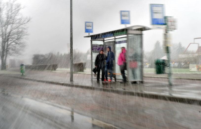 Intensywne opady śniegu z deszczem przeszły nad Szczecinem. /Marcin Bielecki /PAP