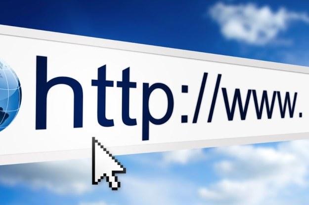Internet Explorer wciąż jest niezwykle popularną przeglądarką internetową /123RF/PICSEL