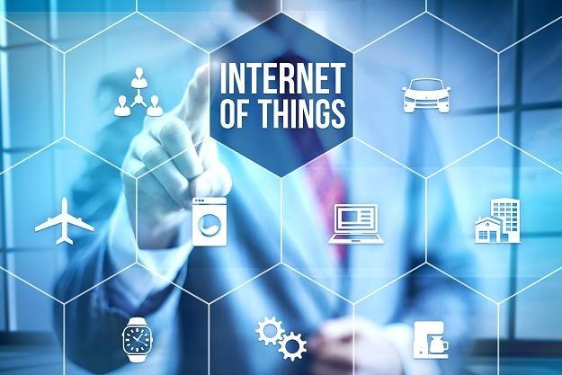 Internet Rzeczy jest kruchy i wystawiony na ataki cyberprzestępców /123RF/PICSEL