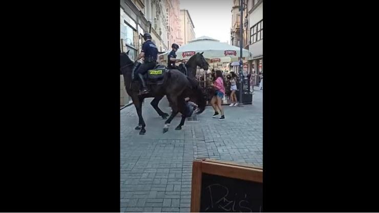 Interwencja policji konnej w Katowicach (Źródło: YouTube.com/CeGie) /