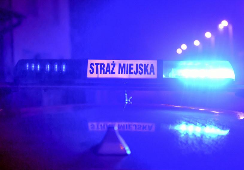 Interweniowała straż miejska /Artur Barbarowski /East News