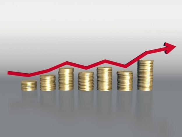 Inwestorzy poszukują alternatywnych form lokowania pieniędzy /© Panthermedia
