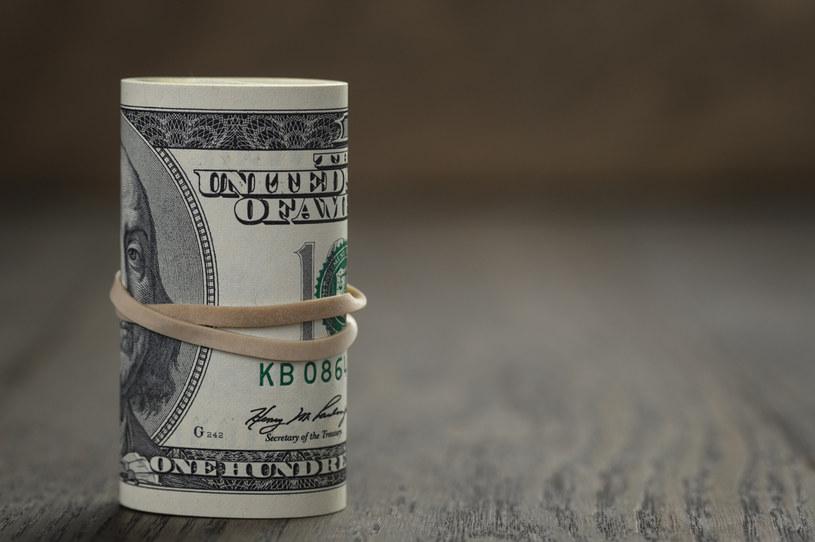 Inwestorzy spekulują przeciw dolarowi /123RF/PICSEL