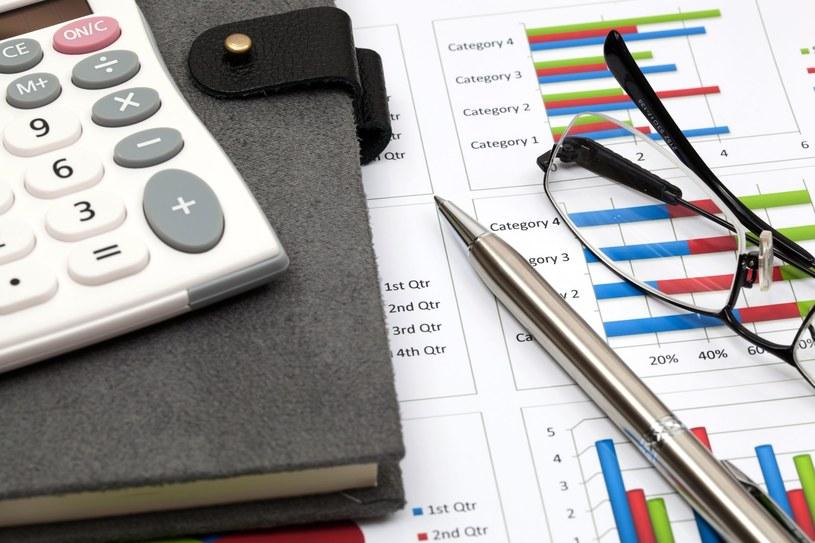 Inwestycje to największe rozczarowanie gospodarcze roku! /123RF/PICSEL