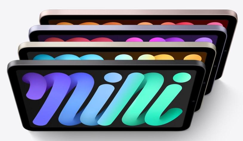 iPad mini 6 Fot. Apple /materiały prasowe